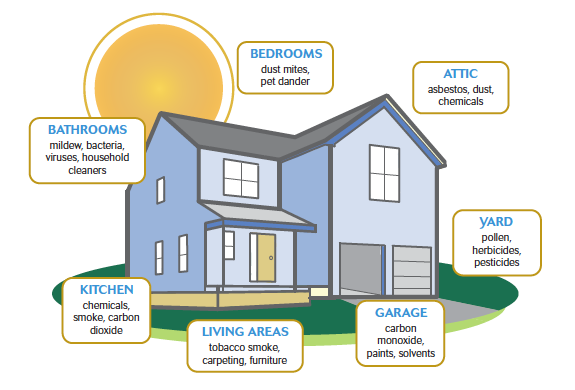 common household air pollutants